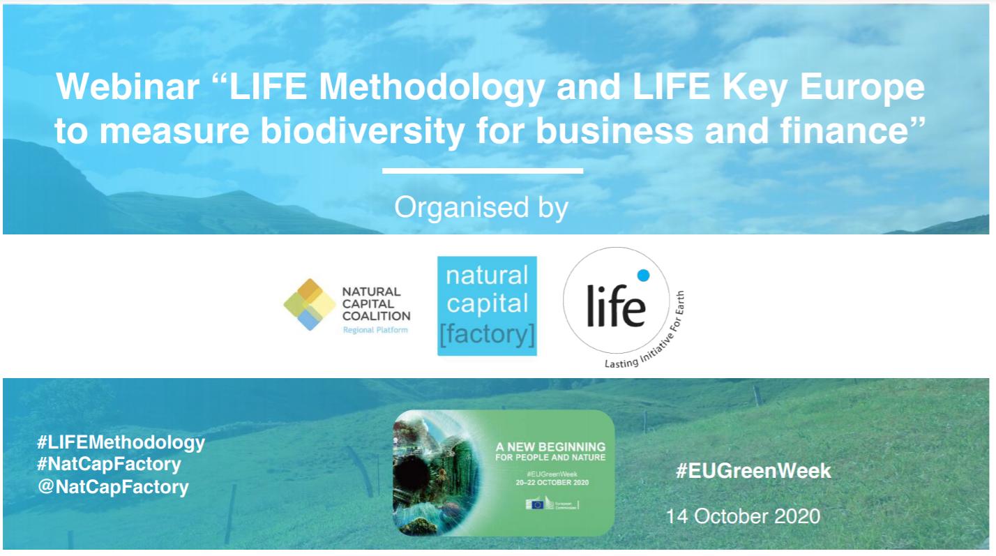 Instituto LIFE e Ecoacsa realizam webinar durante a Semana Verde Europeia
